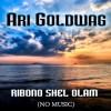 Ari Goldwag: Ribono Shel Olam (No Music)
