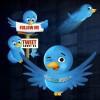 Twit Twitter Twitterer