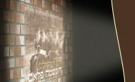 Michoel Schnitzler DVD!