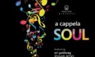 Inspiring Voice reviews Ari Goldwag – A Capella Soul