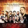 Hislahavus' Review of the Naftali Kalfa Project