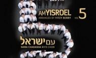 "Shimon's Review of ""Am Yisroel"" by R' Nachman Seltzer and Shira Chadasha"
