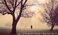 Chaim Yisroel – Metoch Hastoreh