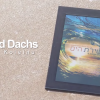 Dovid Dachs Debut New CD