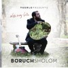 Boruch Sholom's Debut Album Is Almost Here! (COVER +AUDIO PREVIEW)