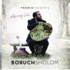 """SPLASHNEWS-Review of Boruch Sholom-""""Bishvili Nivra Haolam"""""""