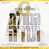 "Yoel Dovid Goldstein Releases The Hit of The Year ""Hinchalto Torah"""