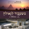 Debut single by Shlomo Z!