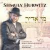 "Singer Shmuly Hurwitz Releases Debut Single ""Mi Adir"" In Honor of Tu B'av"