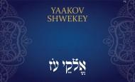 Yaakov Shwekey | ELOKAI OZ