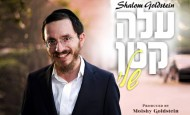 Shalom Goldstein – Aleh Katan Sheli | שלום גאלדשטיין – עלה קטן שלי