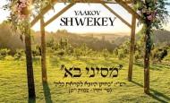 New Single: Yaakov Shwekey | M'Sinai Ba