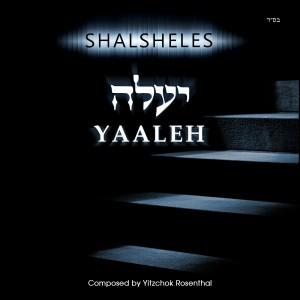 Shalsheles_Yaaleh-Vyavoh_Front_3