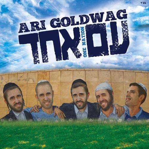 ari-goldwag-am-echad