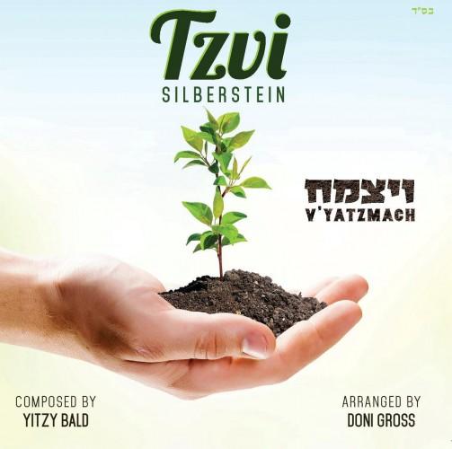 Tzvi Silberstein - Vyatzmach